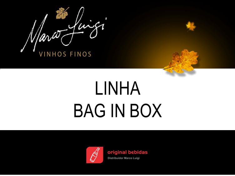 LINHA BAG IN BOX