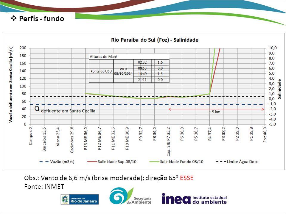  Perfis - fundo Obs.: Vento de 6,6 m/s (brisa moderada); direção 65 0 ESSE Fonte: INMET