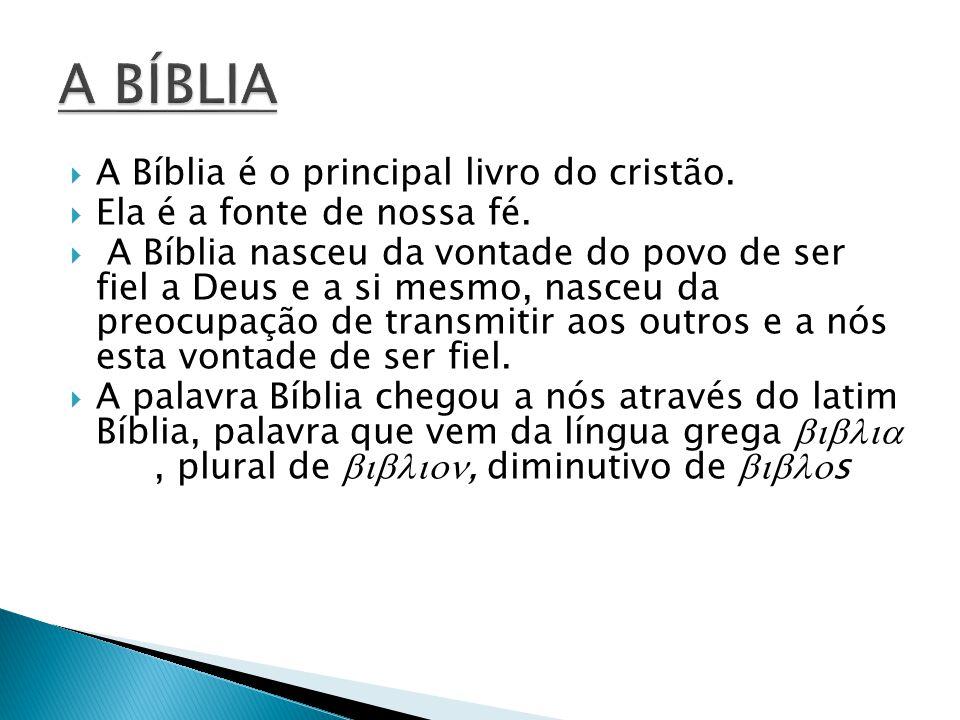  A Bíblia é o principal livro do cristão.  Ela é a fonte de nossa fé.  A Bíblia nasceu da vontade do povo de ser fiel a Deus e a si mesmo, nasceu d