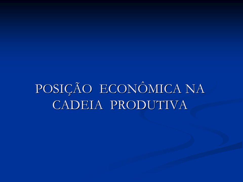 POSIÇÃO ECONÔMICA NA CADEIA PRODUTIVA