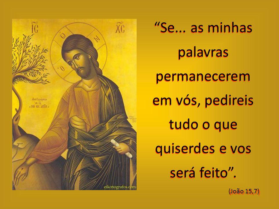 """...e nós viremos a ele, e nele faremos nossa morada"""". (João 12,23)"""