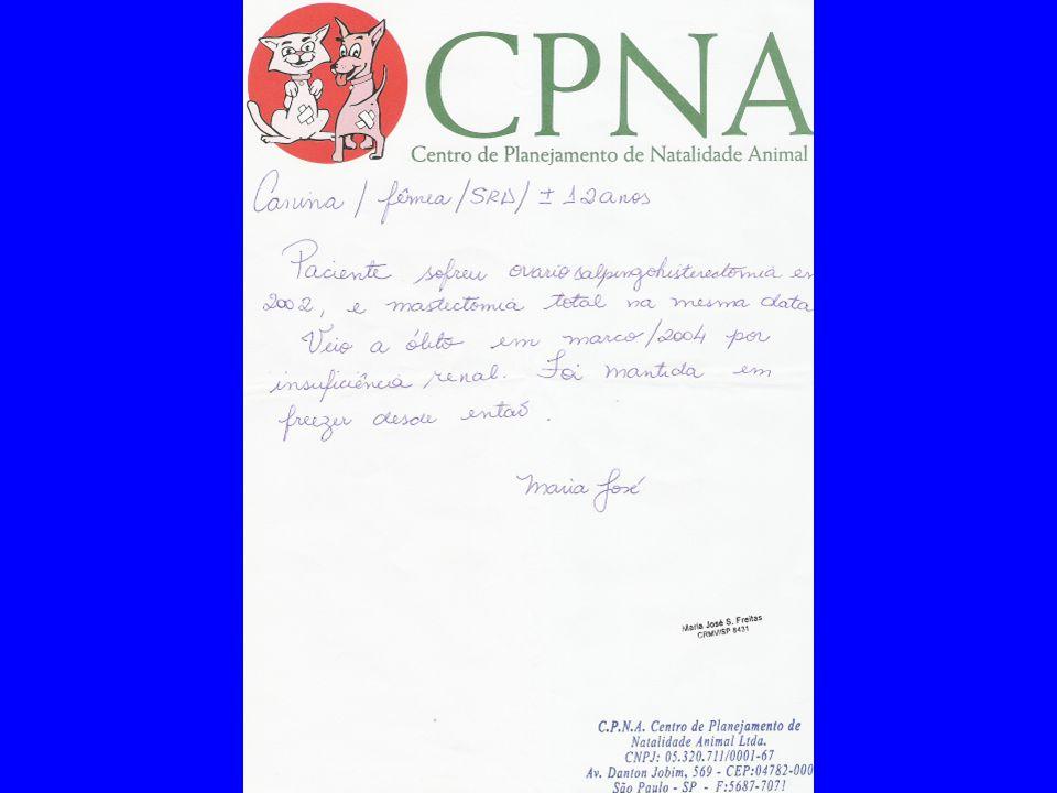 FACULDADE DE MEDICINA DO ABC Preparação de cadáver com solução de Larssen 09/12/2004