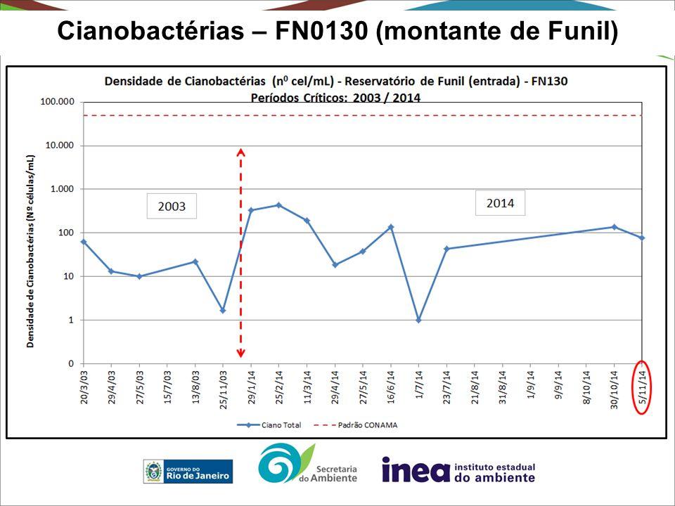 Cianobactérias – FN0130 (montante de Funil)