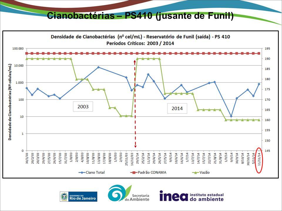 Cianobactérias – PS410 (jusante de Funil)