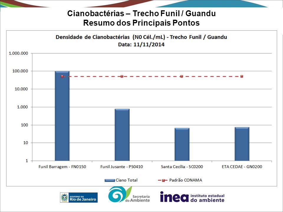 Cianobactérias – Trecho Funil / Guandu Resumo dos Principais Pontos