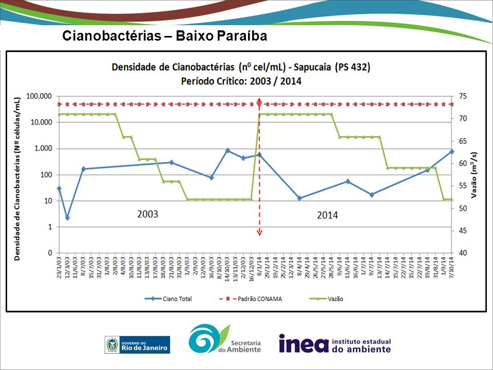 Cianobactérias – Baixo Paraíba