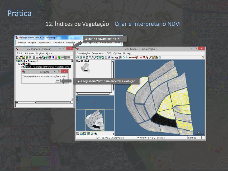 Prática 12. Índices de Vegetação – Criar e interpretar o NDVI Clique no novamente no X ......