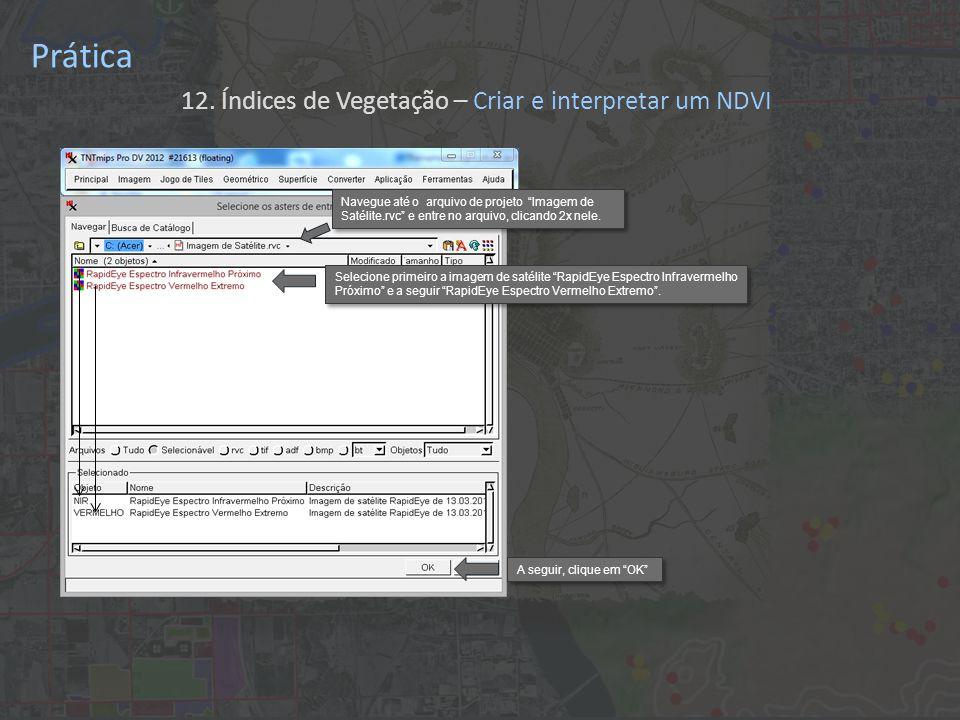 Prática 12. Índices de Vegetação – Criar e interpretar o NDVI Clique em Executar .