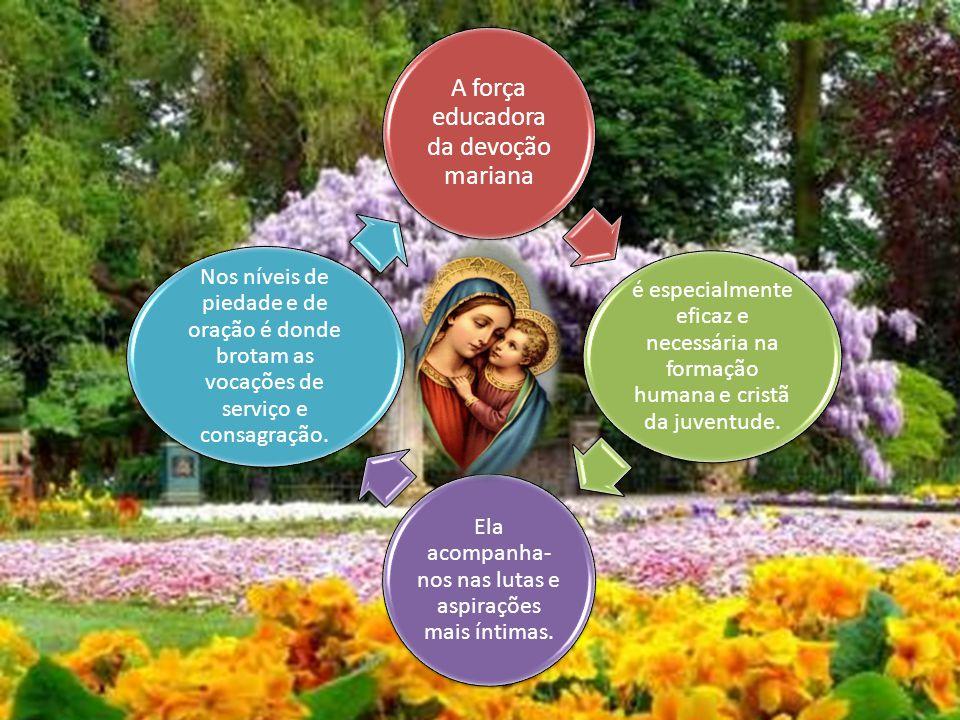 A renovação da devoção a Nossa Senhora faz parte da renovação do espírito missionário da Igreja.