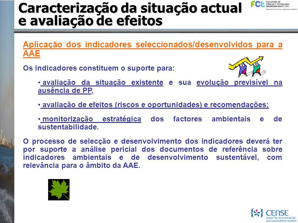 Aplicação dos indicadores seleccionados/desenvolvidos para a AAE Os indicadores constituem o suporte para: avaliação da situação existente e sua evolu