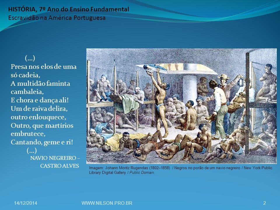 HISTÓRIA, 7º Ano do Ensino Fundamental Escravidão na América Portuguesa (...) Presa nos elos de uma só cadeia, A multidão faminta cambaleia, E chora e