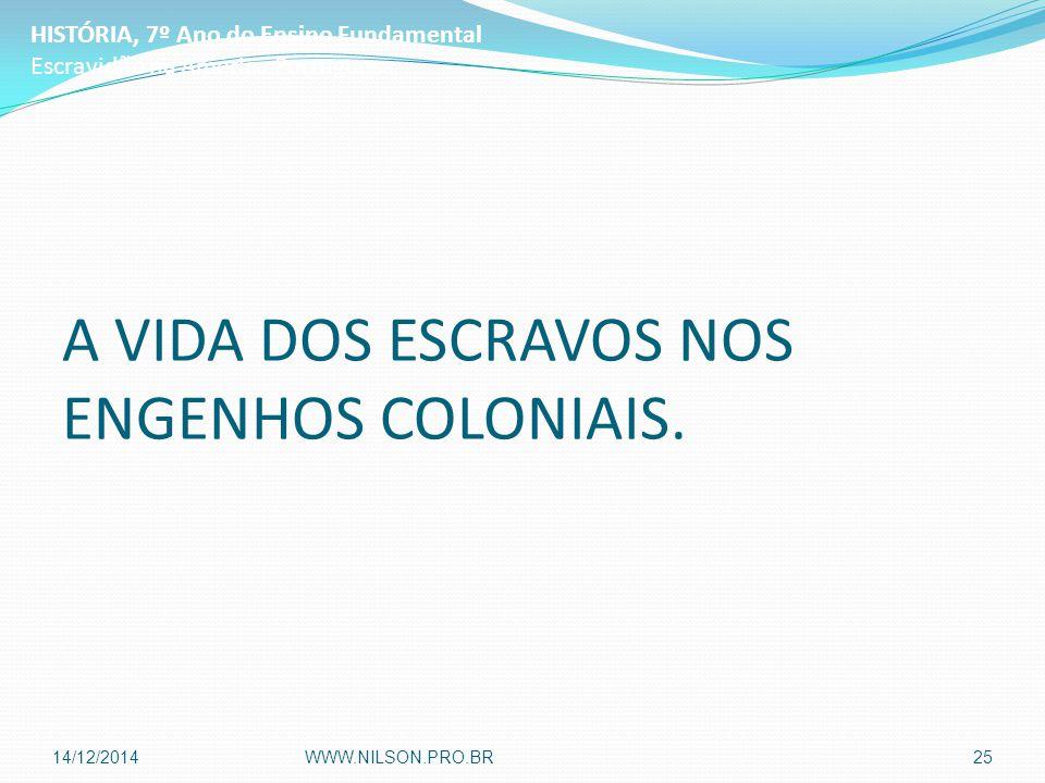 A VIDA DOS ESCRAVOS NOS ENGENHOS COLONIAIS. HISTÓRIA, 7º Ano do Ensino Fundamental Escravidão na América Portuguesa 14/12/2014WWW.NILSON.PRO.BR25