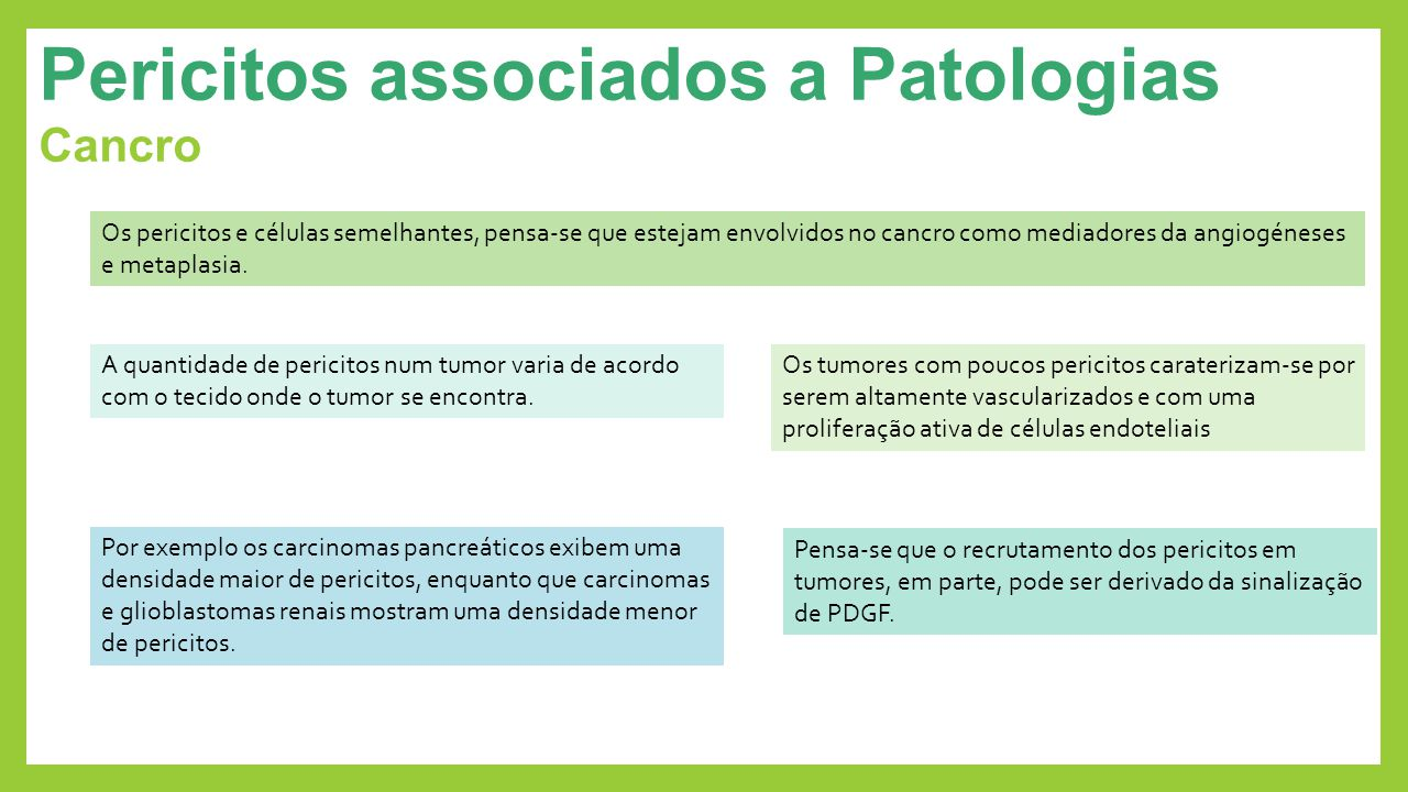 Pericitos associados a Patologias Cancro Os pericitos e células semelhantes, pensa-se que estejam envolvidos no cancro como mediadores da angiogéneses