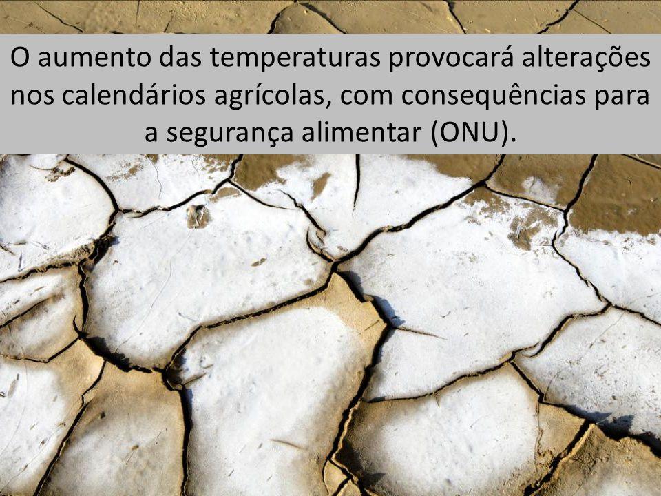 O aumento das temperaturas provocará alterações nos calendários agrícolas, com consequências para a segurança alimentar (ONU).