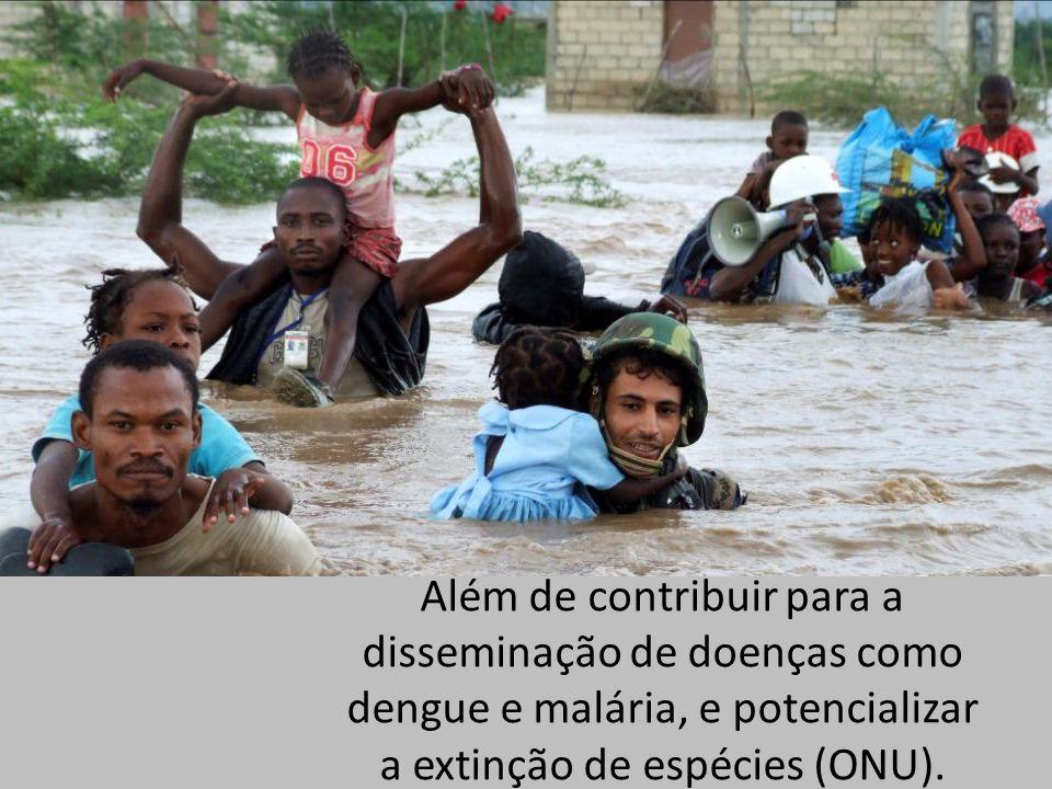 Além de contribuir para a disseminação de doenças como dengue e malária, e potencializar a extinção de espécies (ONU).