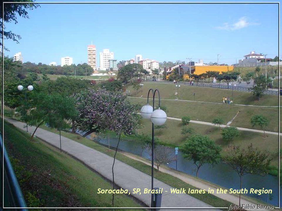 Sorocaba, SP, Brasil – Carlos Alberto de Souza Park – Another angle