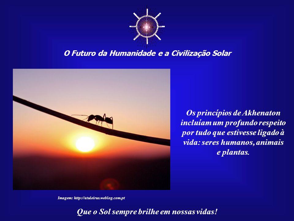 """☼ O Futuro da Humanidade e a Civilização Solar Que o Sol sempre brilhe em nossas vidas! É o que hoje conhecemos por """"Teia da Vida"""". Ele sabia que até"""