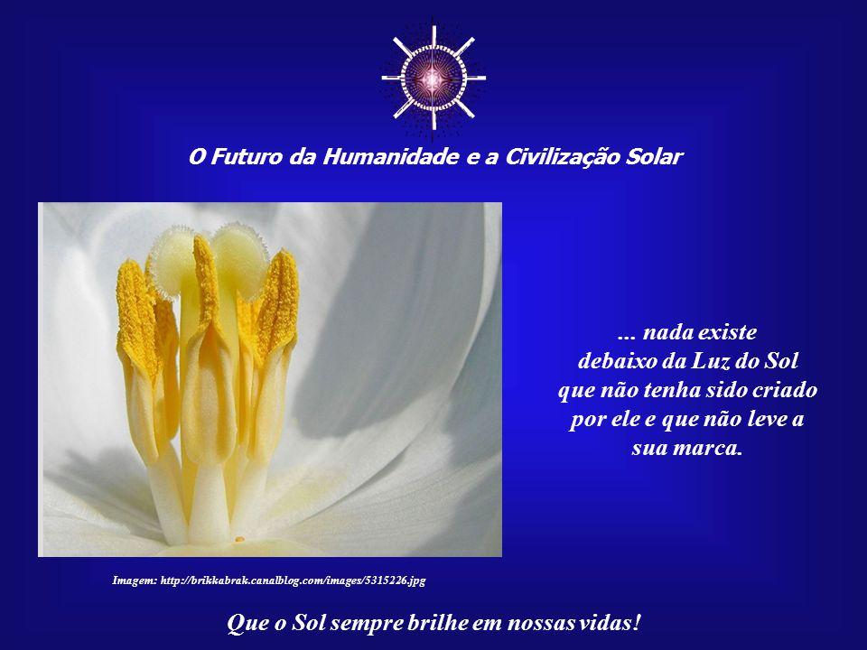 ☼ O Futuro da Humanidade e a Civilização Solar Que o Sol sempre brilhe em nossas vidas! O importante de sua mensagem é que ela tem o poder de entendim