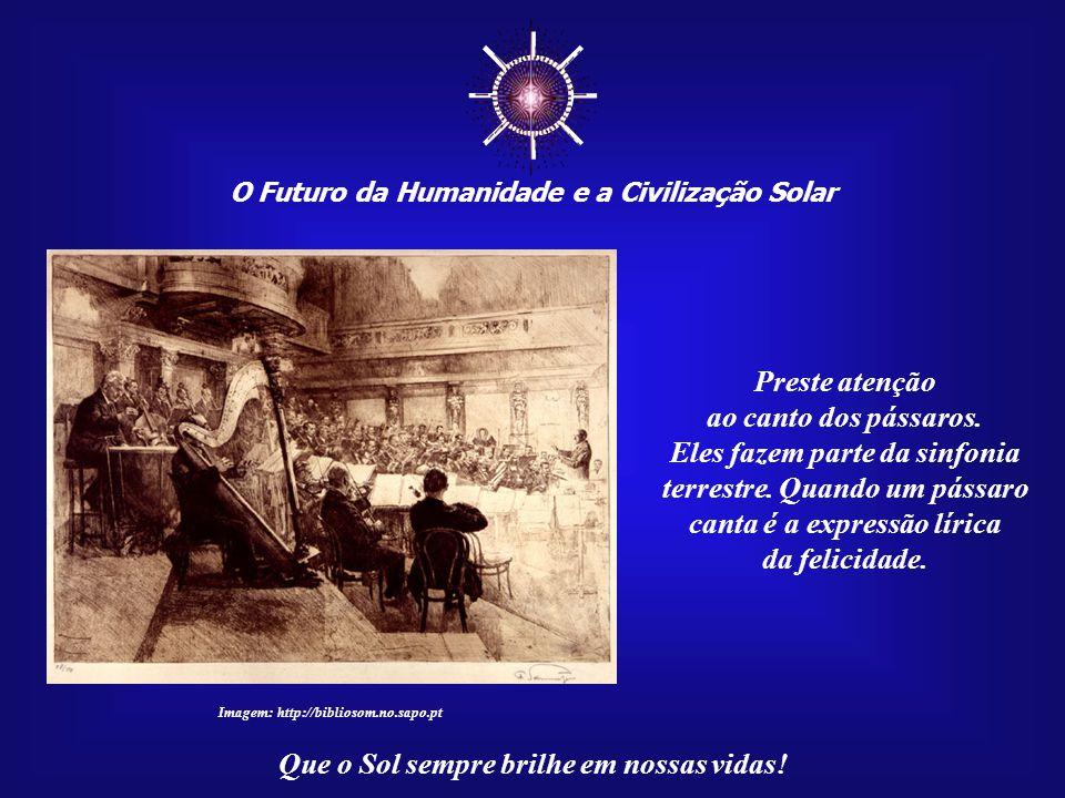 ☼ O Futuro da Humanidade e a Civilização Solar Que o Sol sempre brilhe em nossas vidas! Se causarmos a infelicidade dos outros, mesmo que involuntaria