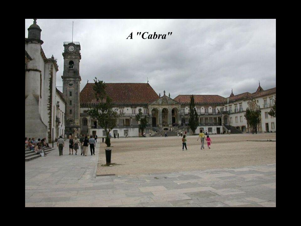Coimbra vista do Satélite