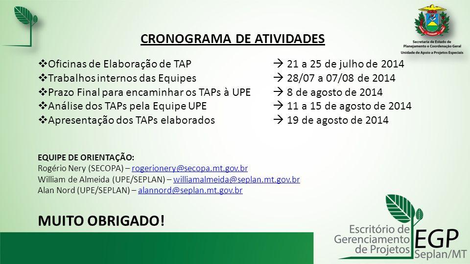 CRONOGRAMA DE ATIVIDADES  Oficinas de Elaboração de TAP  21 a 25 de julho de 2014  Trabalhos internos das Equipes  28/07 a 07/08 de 2014  Prazo Final para encaminhar os TAPs à UPE  8 de agosto de 2014  Análise dos TAPs pela Equipe UPE  11 a 15 de agosto de 2014  Apresentação dos TAPs elaborados  19 de agosto de 2014 EQUIPE DE ORIENTAÇÃO: Rogério Nery (SECOPA) – rogerionery@secopa.mt.gov.brrogerionery@secopa.mt.gov.br William de Almeida (UPE/SEPLAN) – williamalmeida@seplan.mt.gov.brwilliamalmeida@seplan.mt.gov.br Alan Nord (UPE/SEPLAN) – alannord@seplan.mt.gov.bralannord@seplan.mt.gov.br MUITO OBRIGADO!