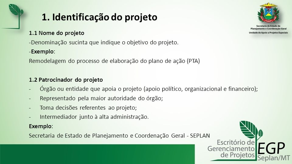 1. Identificação do projeto 1.1 Nome do projeto -Denominação sucinta que indique o objetivo do projeto. -Exemplo: Remodelagem do processo de elaboraçã