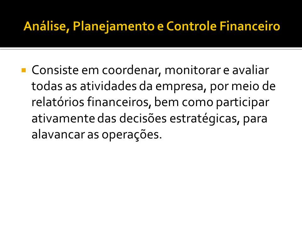  Consiste em coordenar, monitorar e avaliar todas as atividades da empresa, por meio de relatórios financeiros, bem como participar ativamente das de