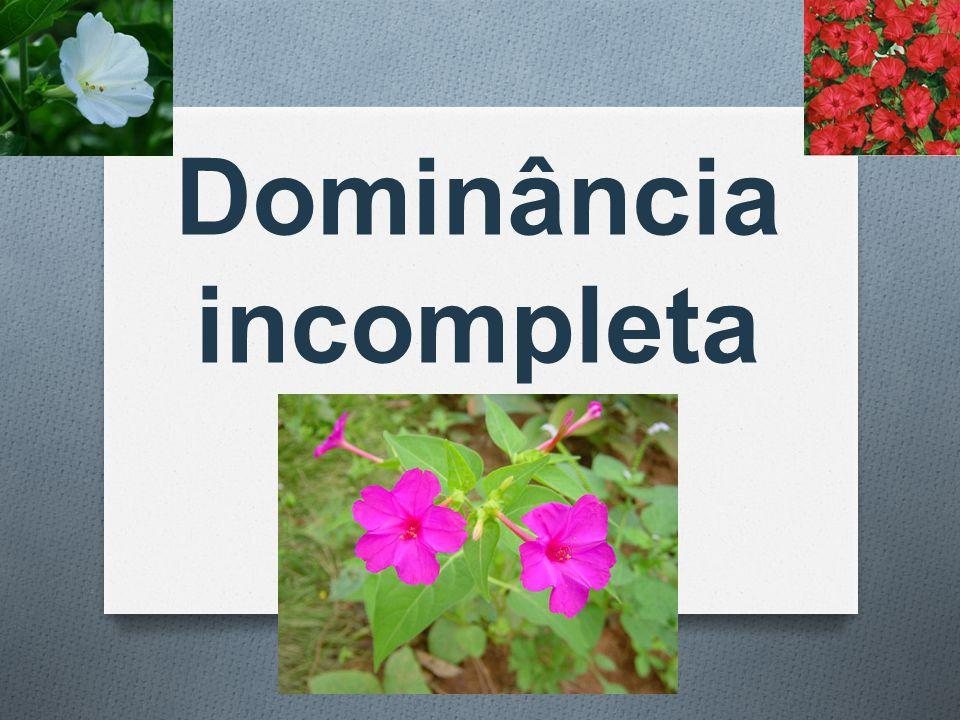  Dominância incompleta é quando o indivíduo heterozigoto apresenta um fenótipo intermediário entre os fenótipos dos homozigotos.