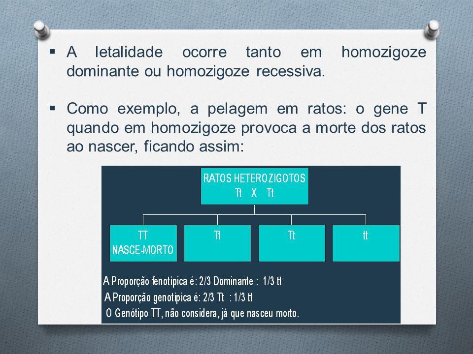  A letalidade ocorre tanto em homozigoze dominante ou homozigoze recessiva.  Como exemplo, a pelagem em ratos: o gene T quando em homozigoze provoca