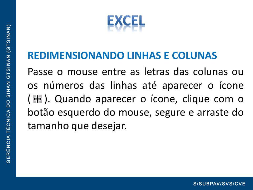 REDIMENSIONANDO LINHAS E COLUNAS Passe o mouse entre as letras das colunas ou os números das linhas até aparecer o ícone ( ). Quando aparecer o ícone,