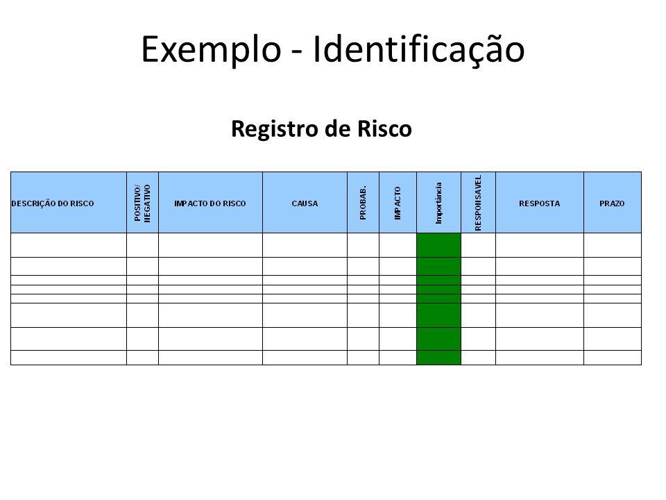 Registro de Risco Exemplo - Identificação