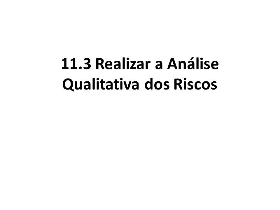 11.3 Realizar a Análise Qualitativa dos Riscos
