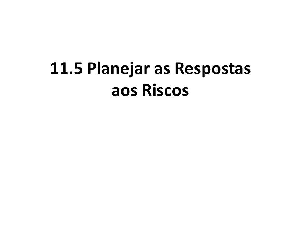 11.5 Planejar as Respostas aos Riscos