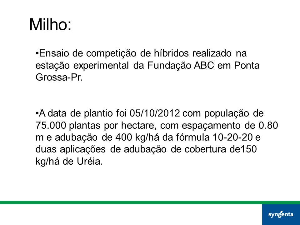 Ensaio de competição de híbridos realizado na estação experimental da Fundação ABC em Ponta Grossa-Pr. A data de plantio foi 05/10/2012 com população