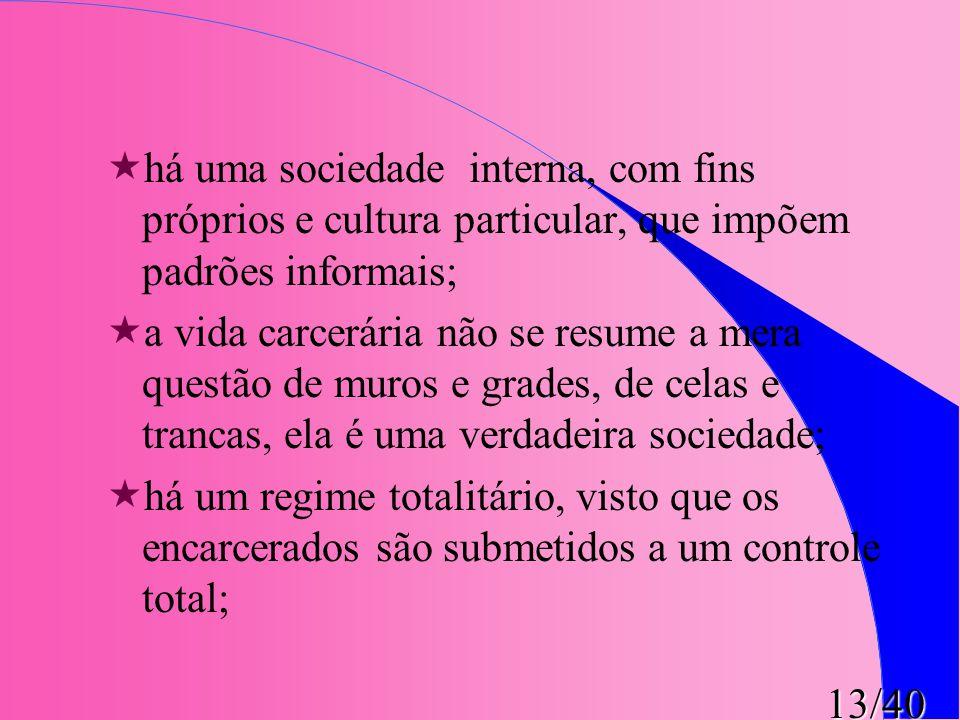 13/40 «há uma sociedade interna, com fins próprios e cultura particular, que impõem padrões informais; «a vida carcerária não se resume a mera questão