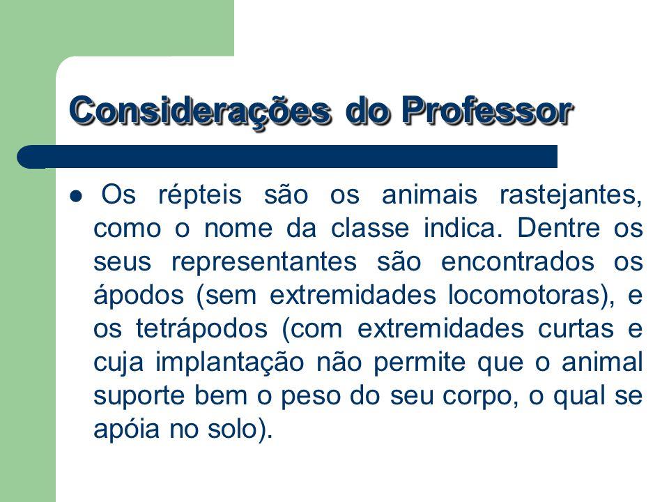 Considerações do Professor Os répteis são os animais rastejantes, como o nome da classe indica. Dentre os seus representantes são encontrados os ápodo