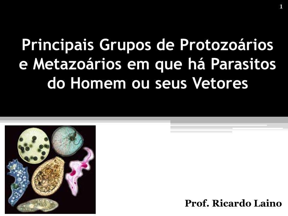 Principais Grupos de Protozoários e Metazoários em que há Parasitos do Homem ou seus Vetores Prof. Ricardo Laino 1