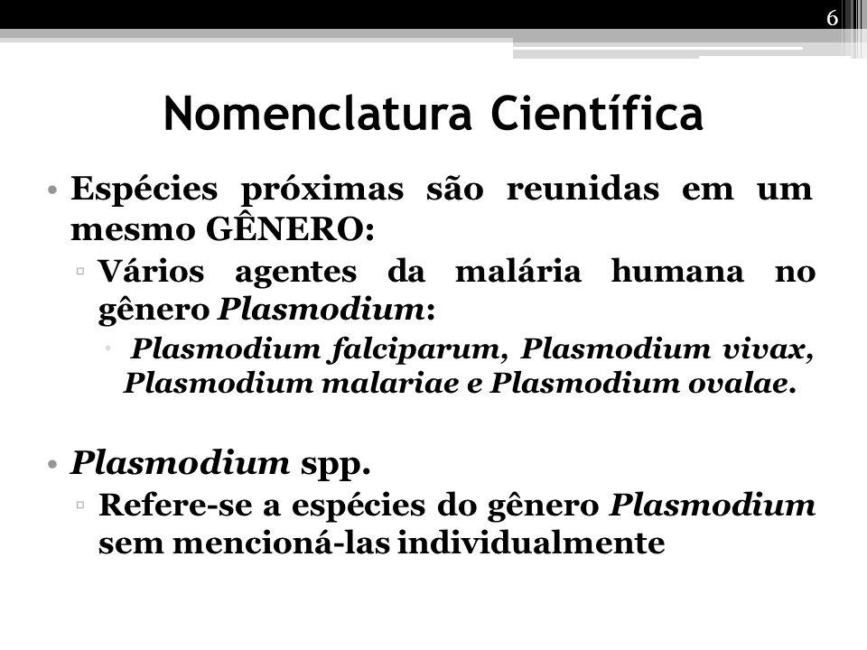 Espécies próximas são reunidas em um mesmo GÊNERO: ▫Vários agentes da malária humana no gênero Plasmodium:  Plasmodium falciparum, Plasmodium vivax,