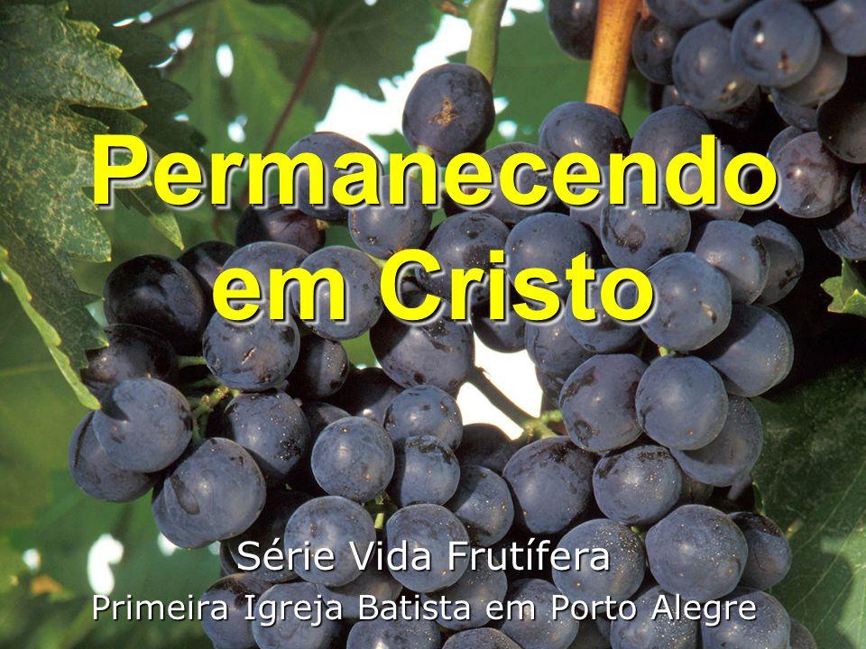 Permanecendo em Cristo Série Vida Frutífera Primeira Igreja Batista em Porto Alegre