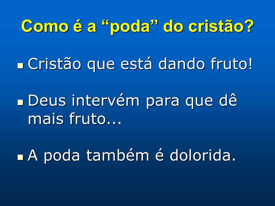 Como é a poda do cristão.Cristão que está dando fruto.