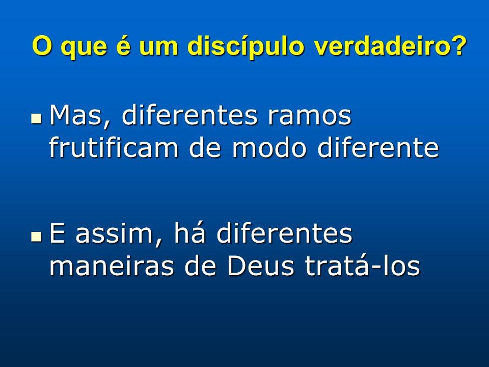 O que é um discípulo verdadeiro? Mas, diferentes ramos frutificam de modo diferente Mas, diferentes ramos frutificam de modo diferente E assim, há dif