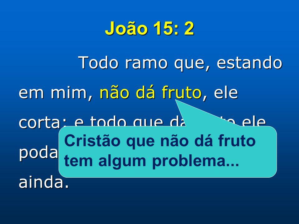 João 15: 2 Todo ramo que, estando em mim, não dá fruto, ele corta; e todo que dá fruto ele poda, para que dê mais fruto ainda. Cristão que não dá frut