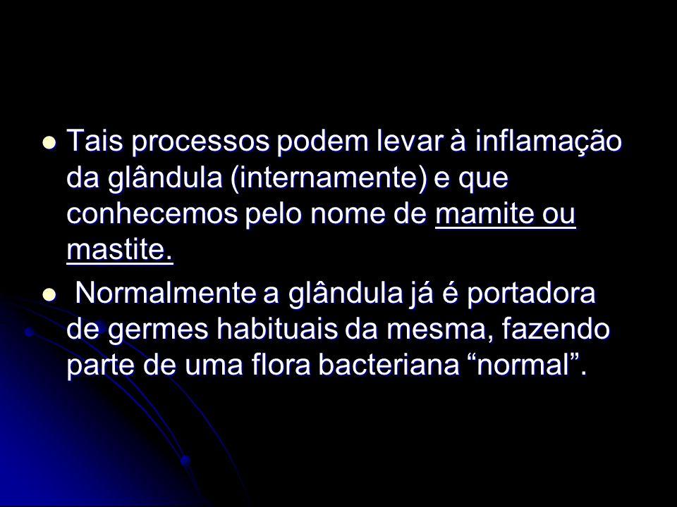 Tais processos podem levar à inflamação da glândula (internamente) e que conhecemos pelo nome de mamite ou mastite. Tais processos podem levar à infla
