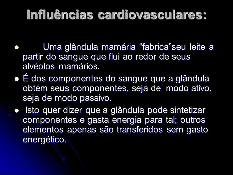 """Influências cardiovasculares: Uma glândula mamária """"fabrica""""seu leite a partir do sangue que flui ao redor de seus alvéolos mamários. Uma glândula mam"""