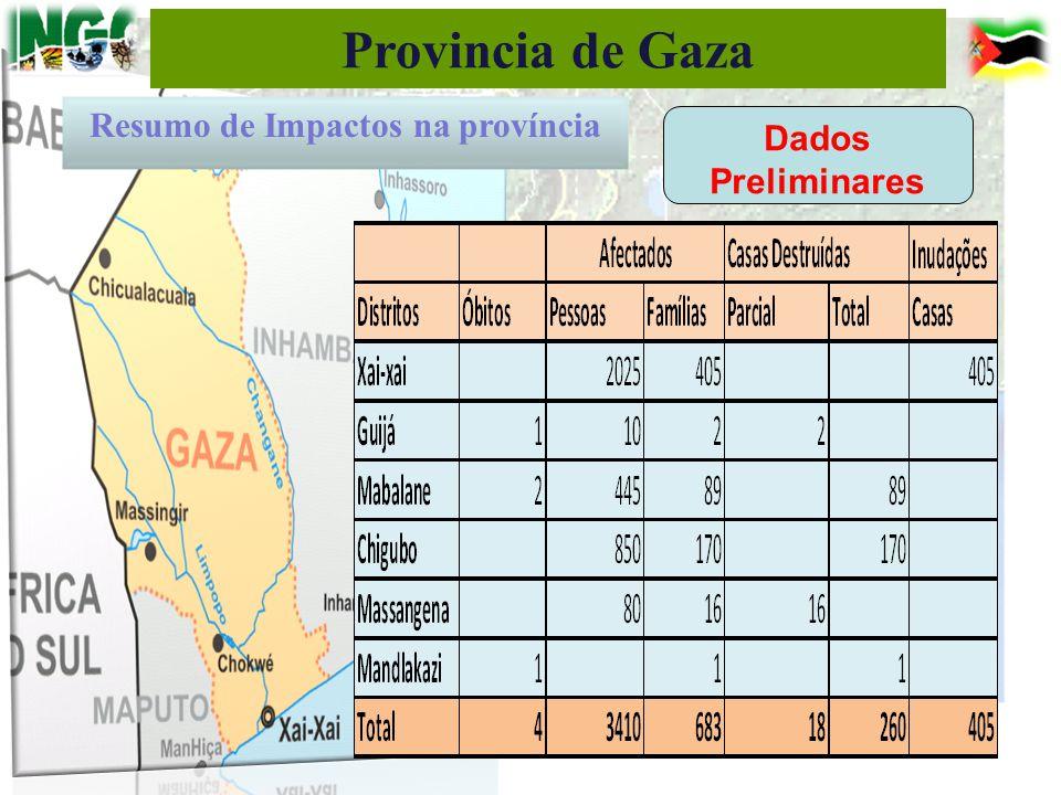 Provincia de Gaza Resumo de Impactos na província Dados Preliminares