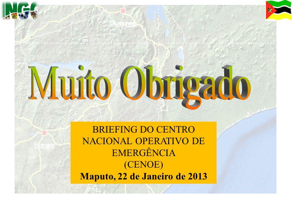 51 BRIEFING DO CENTRO NACIONAL OPERATIVO DE EMERGÊNCIA (CENOE) Maputo, 22 de Janeiro de 2013