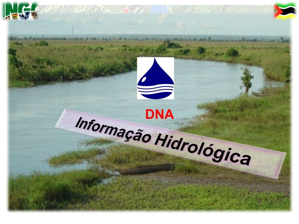 20 de Janeiro de 2013 DNA