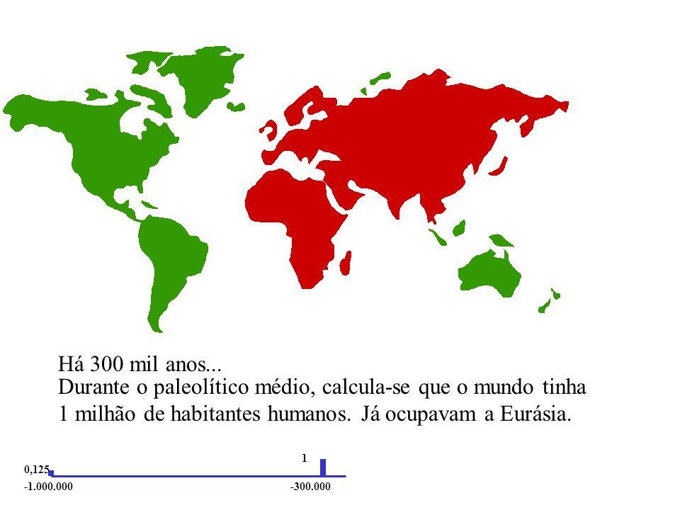 durante o paleolítico inferior, calcula-se que o mundo tinha 125.000 habitantes humanos.