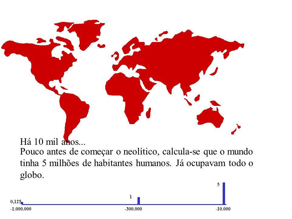 Durante o paleolítico médio, calcula-se que o mundo tinha 1 milhão de habitantes humanos.