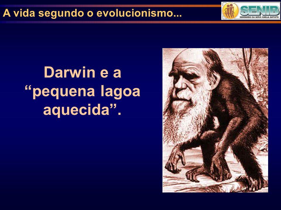 """A vida segundo o evolucionismo... Darwin e a """"pequena lagoa aquecida""""."""